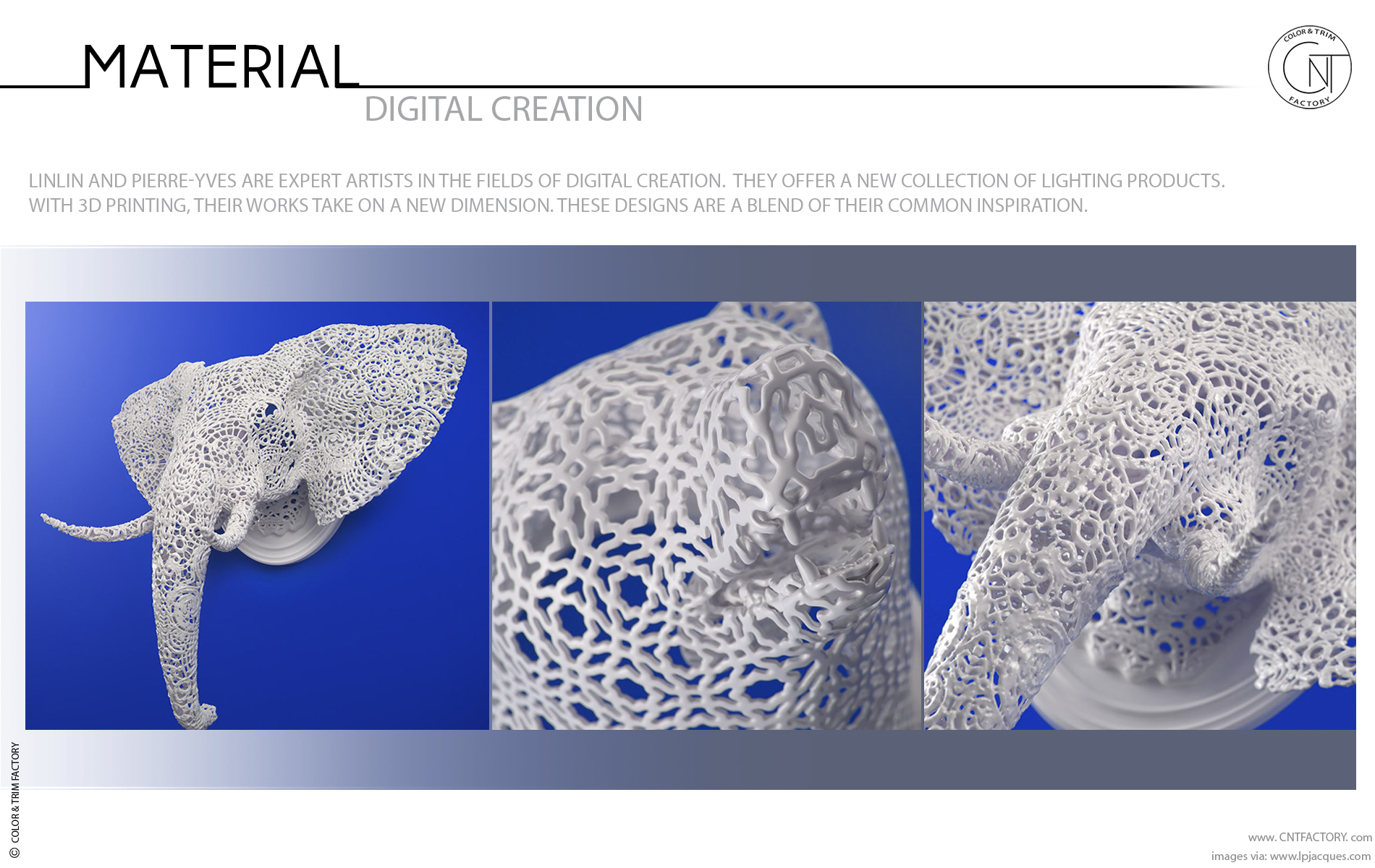 Digital Creation 3D Printed Animal Lace