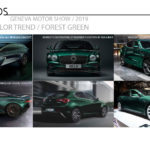 2019 Geneva Motor Show / Color and Trim Trends / Part 1