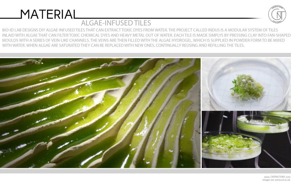 Algae Infused Tiles