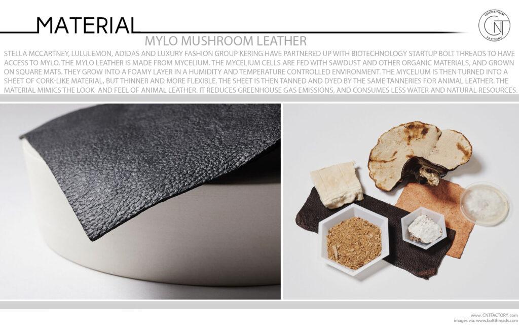 Mylo Mushroom Leather