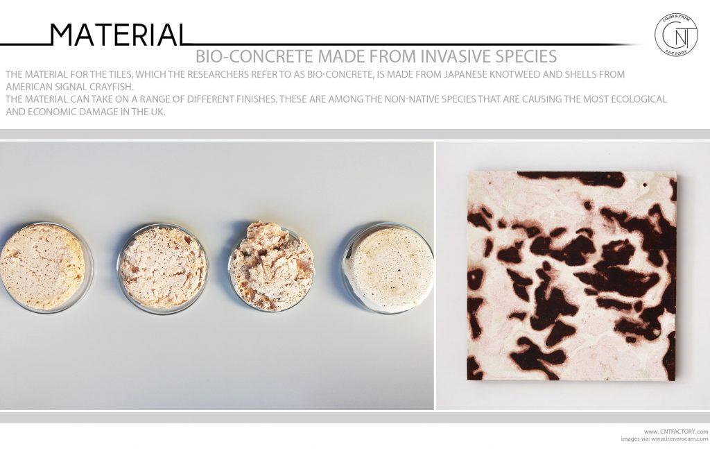 Bio Concrete Made From Invasive Species