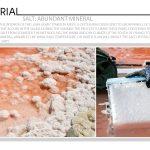 Salt: Abundant Mineral